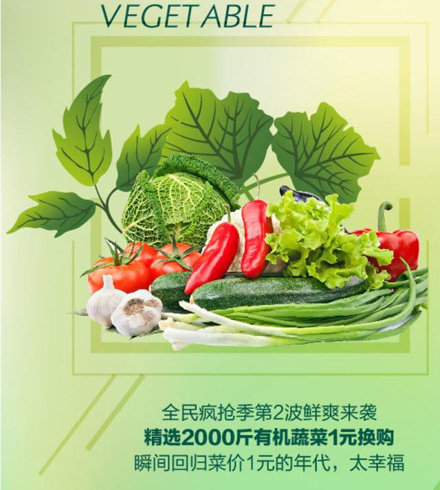 找绿色有机食品代理